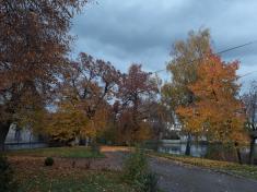 Podzim urybníku